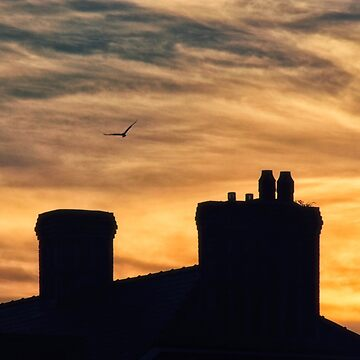 Sunset with building roof silhouette by franceslewis