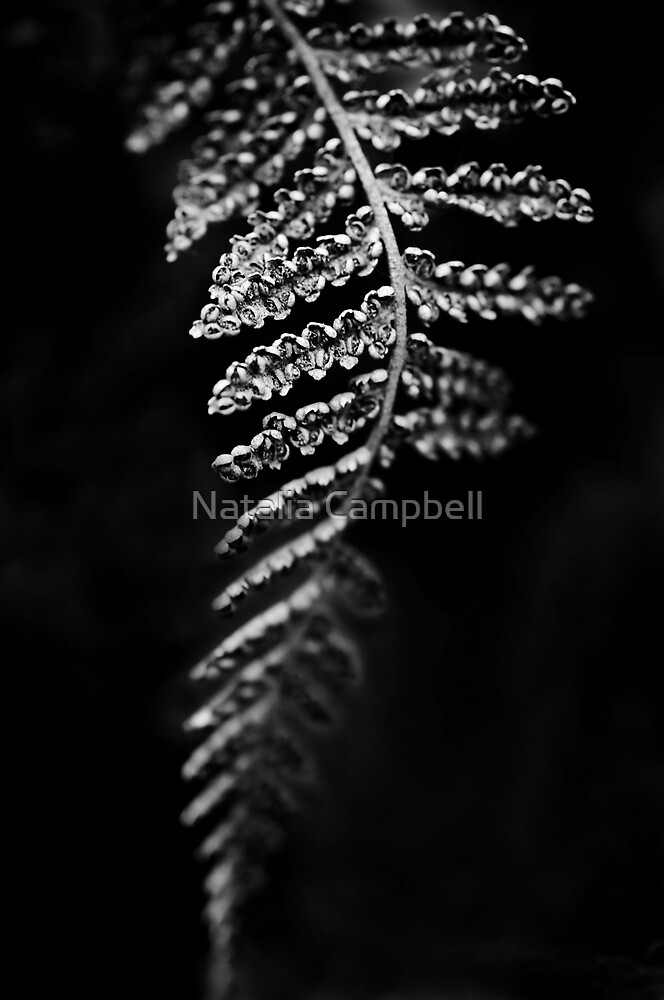 .leaf. by Natalia Campbell