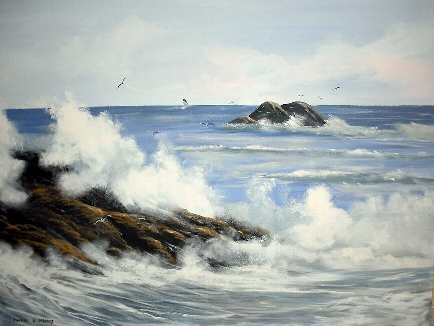 screaming gulls by cathal  o malley