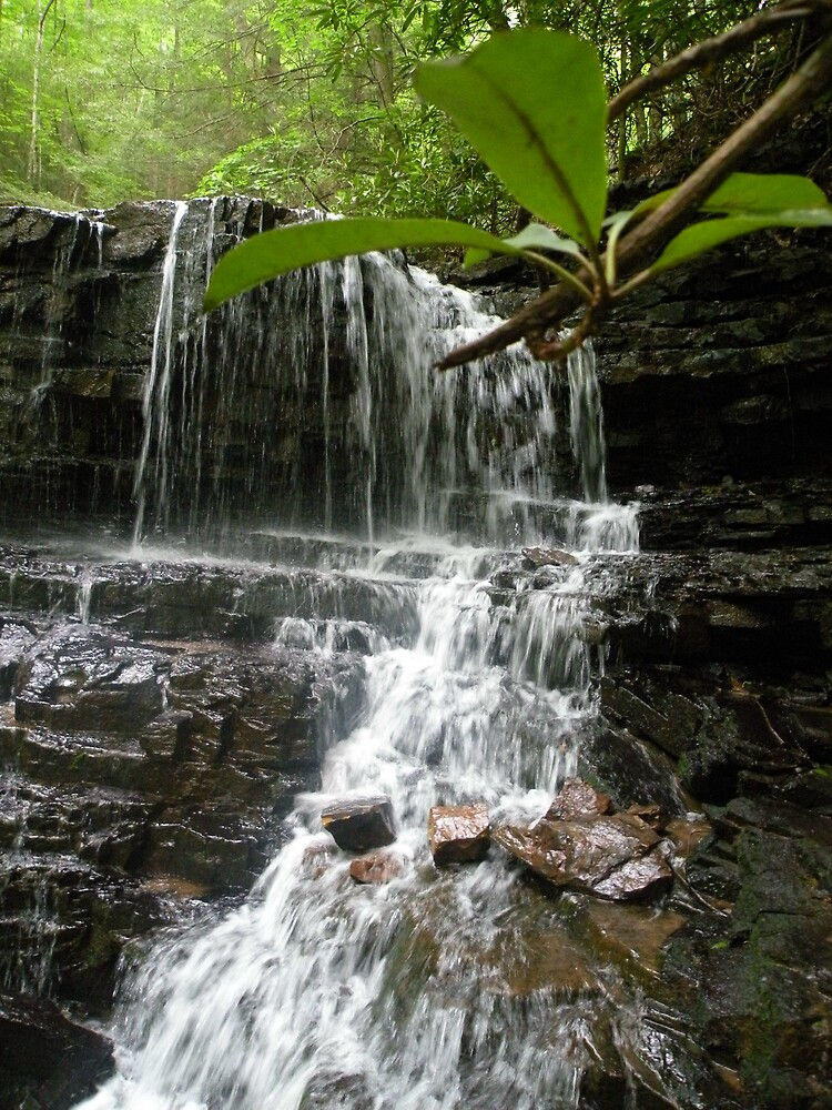 Laurel Falls TN by Nokie