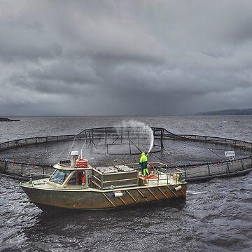 Fish Farm by PaulaMcManus