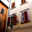 Shutters & Colours by diLuisa Photography