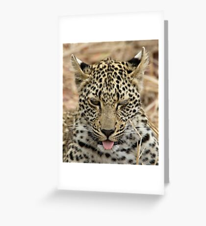 Cuteness Greeting Card