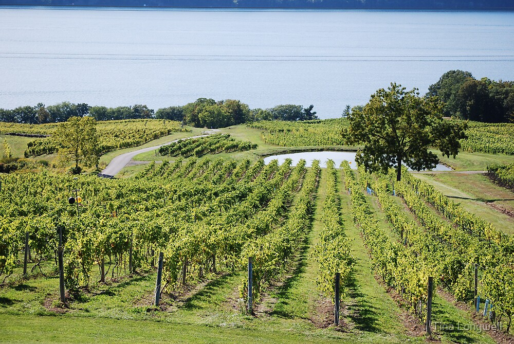 Lakeside Vines by Tina Longwell