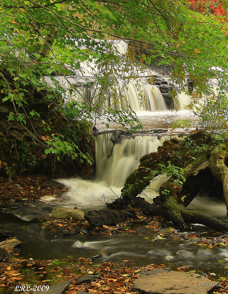 Shohola  Water Falls  by Lorirobin