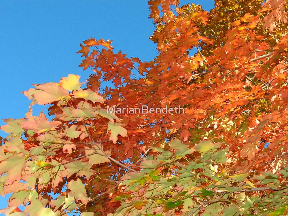 October Mood by MarianBendeth