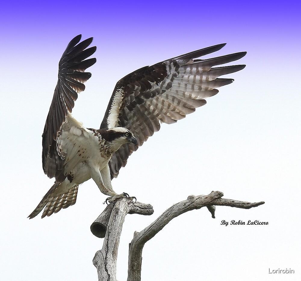 MOMMY IS FLYING   by Lorirobin