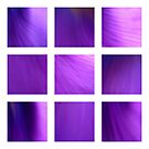 Purple Fantasy by Kitsmumma