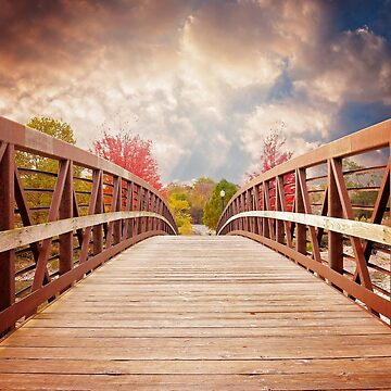 Wooden bridge by NaCl01