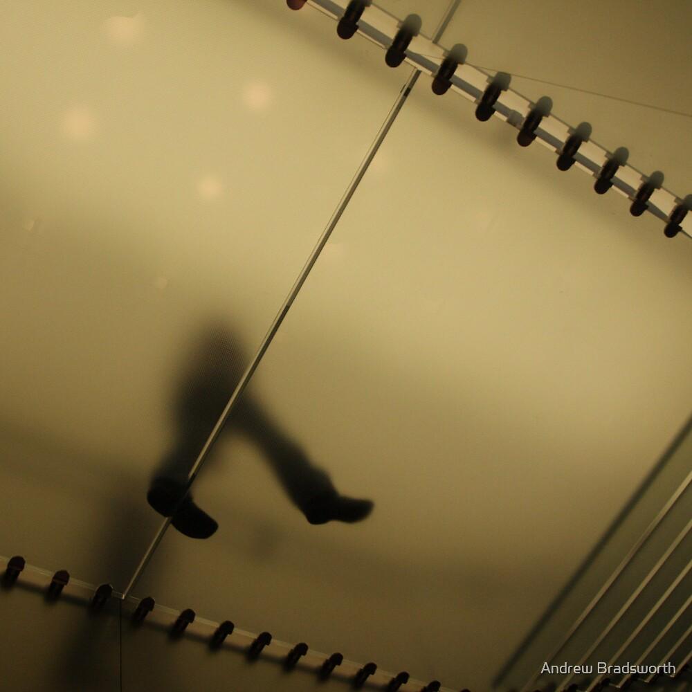 glass floor by Andrew Bradsworth