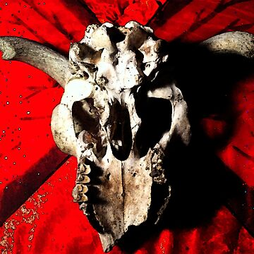 Skull Red (O.43) by Darling2425