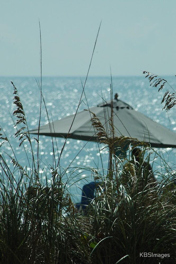 Beach Umbrella thru the Grass by KBSImages