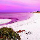 Purple Sunset by JuliaKHarwood