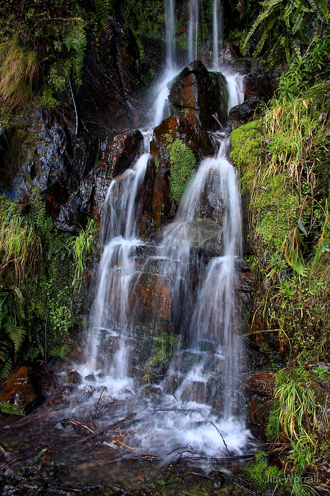 Roadside Falls by Jim Worrall