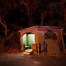 Hide from the Dark by David Haworth