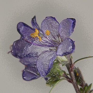 Tiny Blossom by MarthaMedford