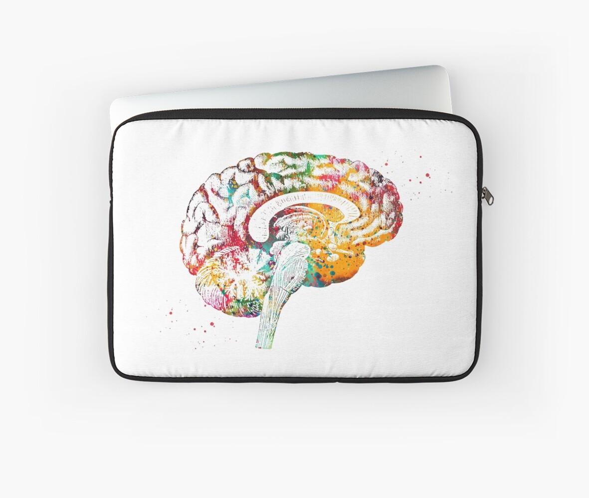 Fundas para portátil «Sección transversal de la anatomía del cerebro ...