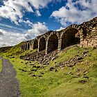 Ironstone Kilns Rosedale by grumpykeith