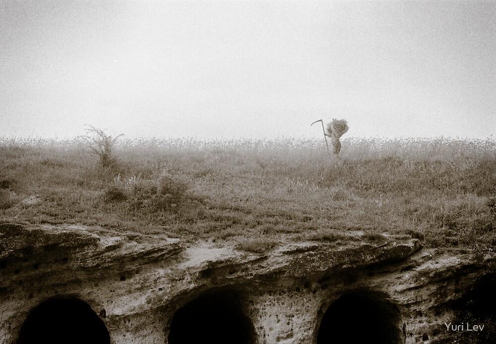 Hay Gatherer by Yuri Lev