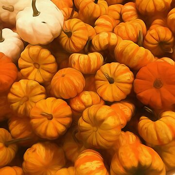 Pumpkins Tiny Gourds Pile by bloomingvine