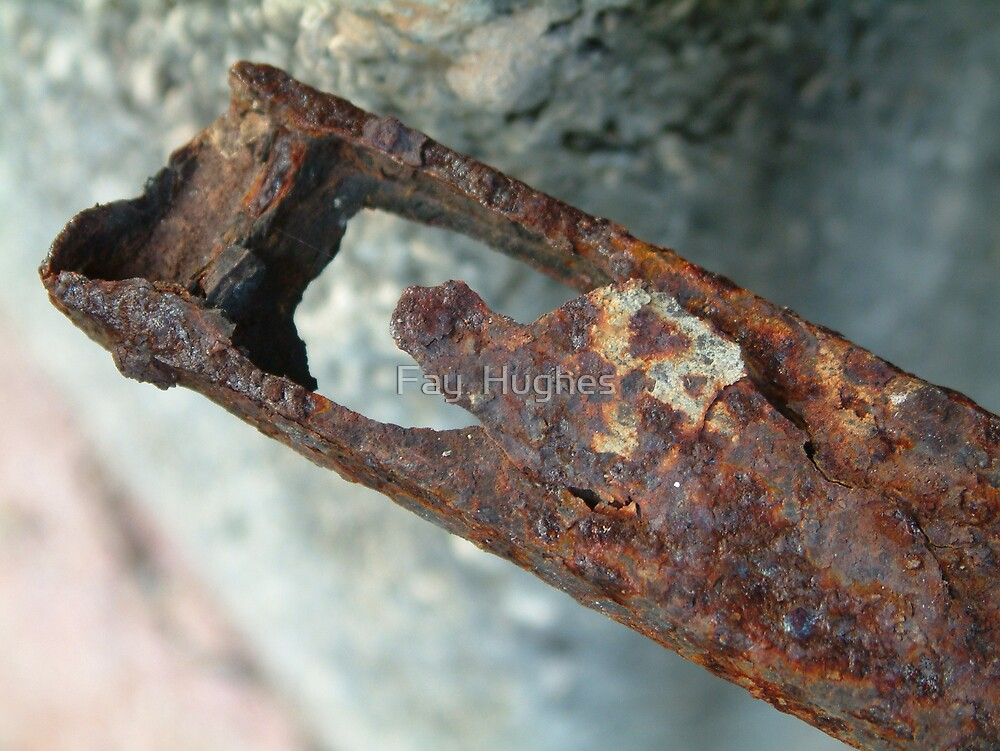 Rust by Fay  Hughes