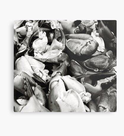 Crab Claws Metal Print