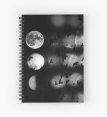 Shadows on my wall Spiral Notebook