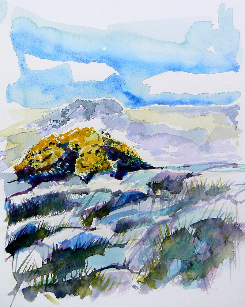 Yellow Gorse 2 by Richard Sunderland