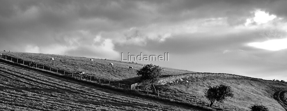 Untitled by Lindamell