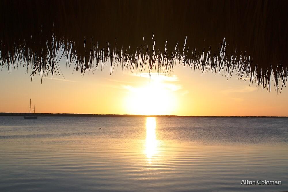 """Manatee Bay Sunset"" by Alton Coleman"