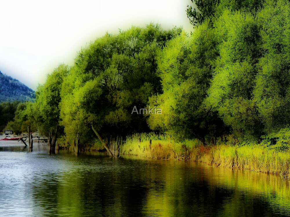 reflections 3 by Amkia