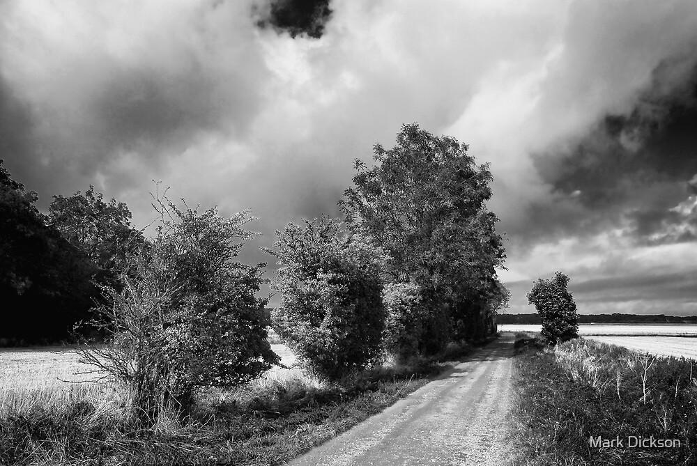 John Muir Way by Mark Dickson