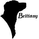 Brittany pride! by stellarmule