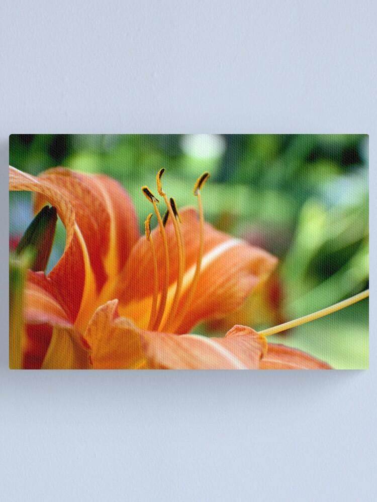Alternate view of Orange Daylily Canvas Print