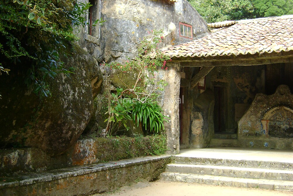 welcome to paradise 59..convento dos capuchos sintra portugal.. by Almeida Coval