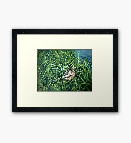 Ey up me duck Framed Print
