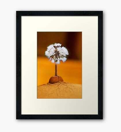 step into new life Framed Print