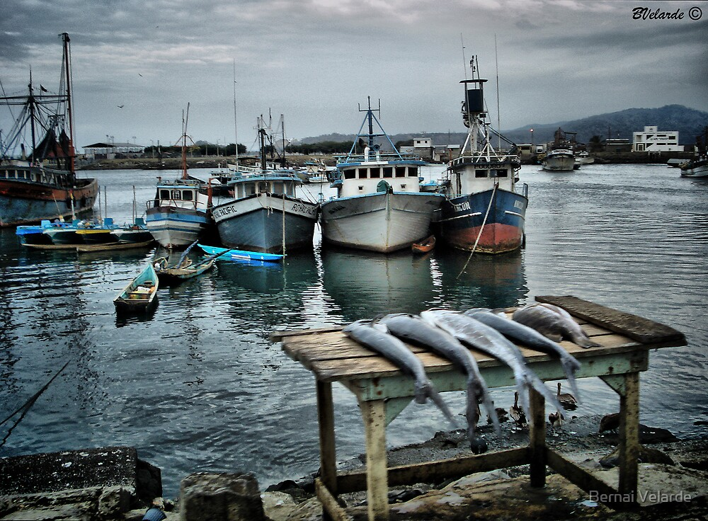 Dock in Esmeralda, Ecuador by Bernai Velarde PCE 3309