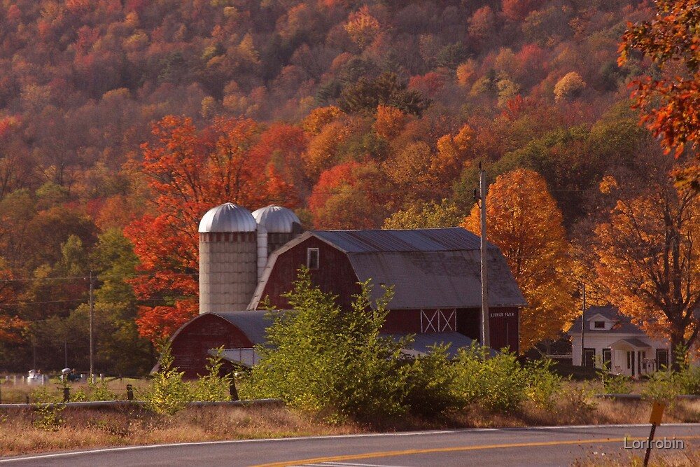 Autumn In Upstate New York by Lorirobin
