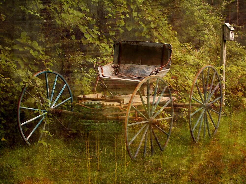 Farm wagon.... by DaveHrusecky