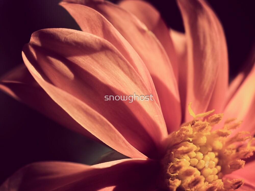 beautiful reserve by sabrina card