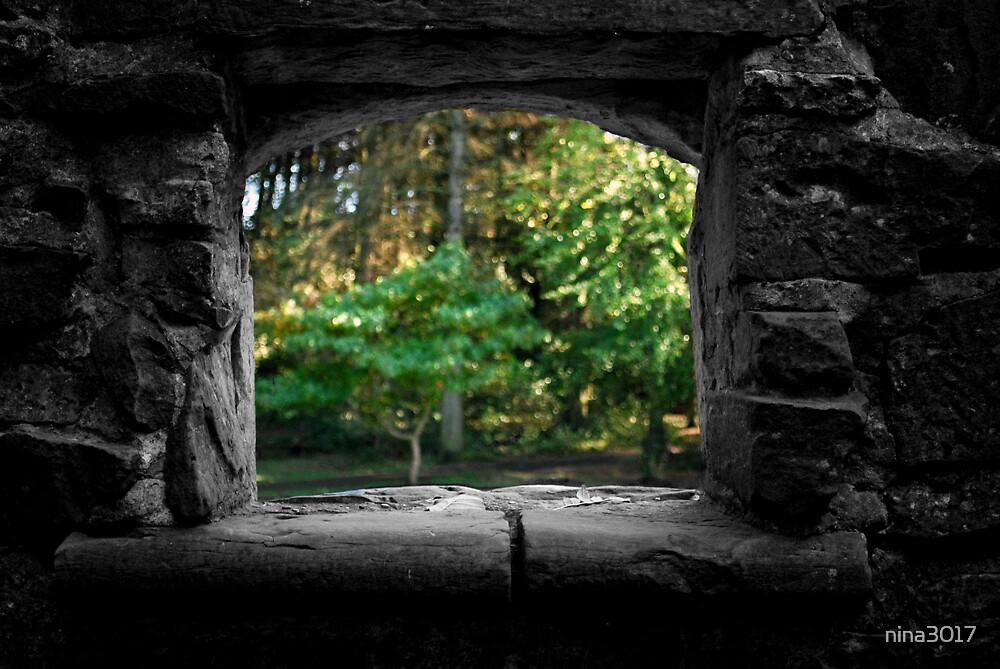 Autumn Window by nina3017