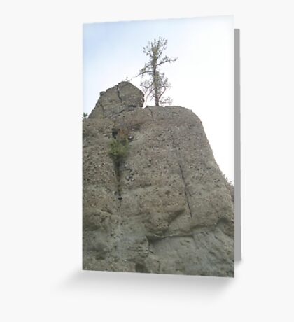 Tree on Sandstone Outcrop Greeting Card