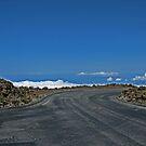 View from Haleakala, Crater -Maui, Hawaii by sandra greenberg