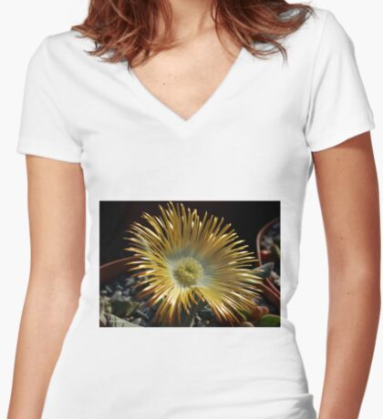 Ihlenfeldia excavate – AIZOACEAE Women's Fitted V-Neck T-Shirt