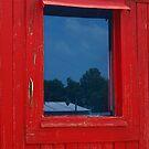 A Peeling Window by Richard G Witham