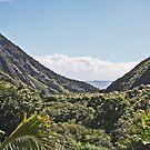 Iao Valley, Wailuku, Maui, Hawaii by sandra greenberg