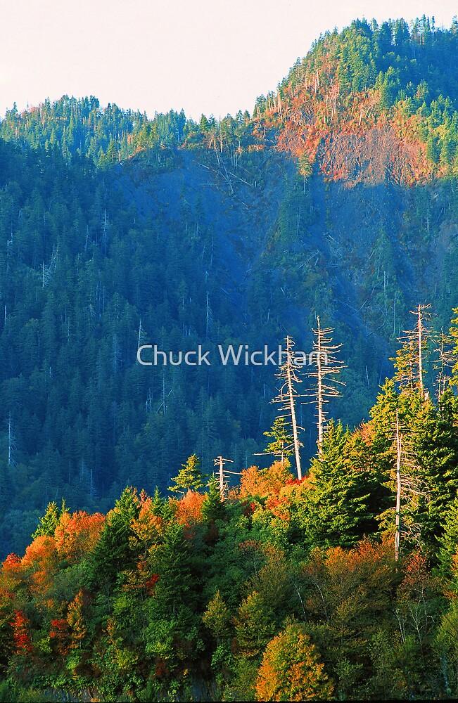 NEWFOUND GAP,AUTUMN by Chuck Wickham