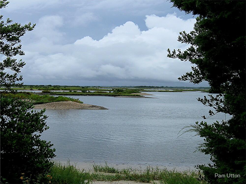 all quiet on the Key - Cedar Key FL by Pam Utton