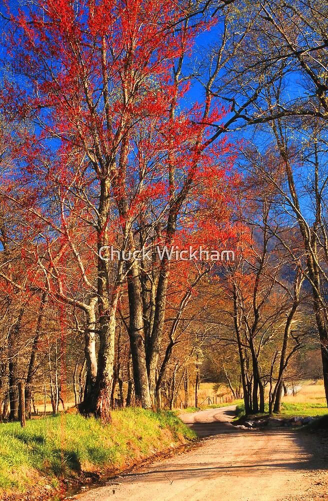 SPARKS LANE, SPRING by Chuck Wickham